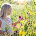 Jaki lekki skoroszyt dla dziecka?